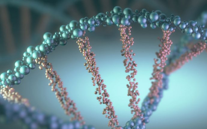 Human genetic disease | Britannica.com